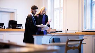 anklagere i landsretten